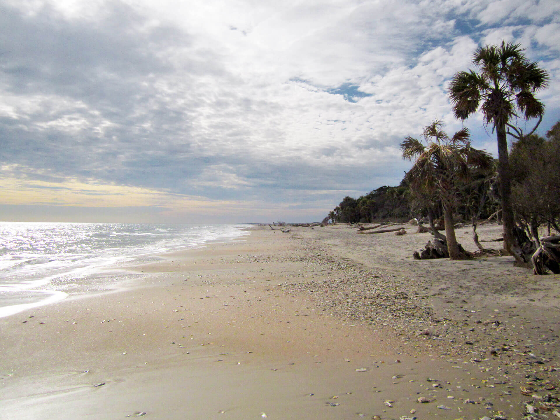 Edisto Island The Best Fishing Spots