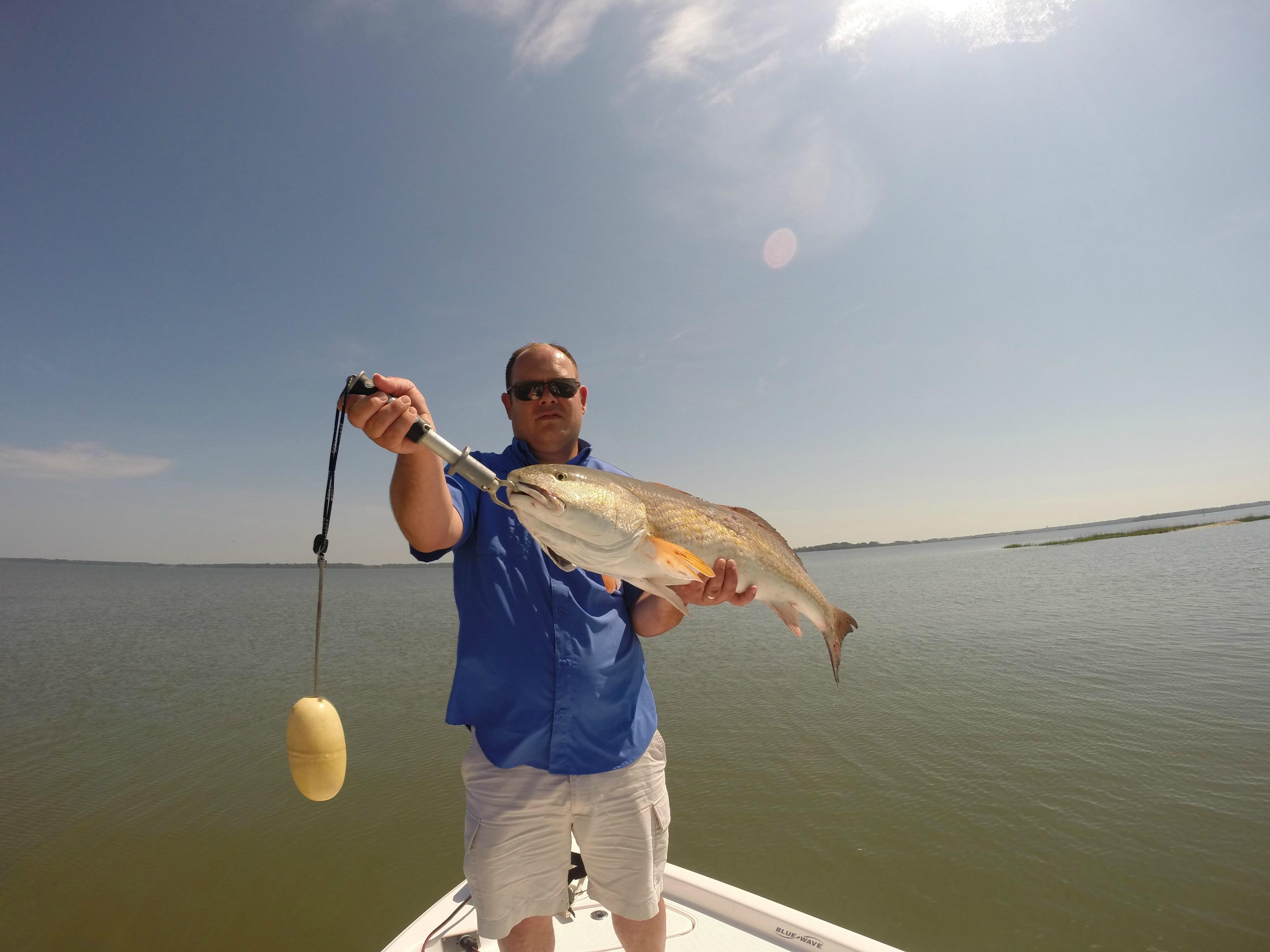 Charleston sc charter fishing report charleston fishing for Fishing charters charleston sc